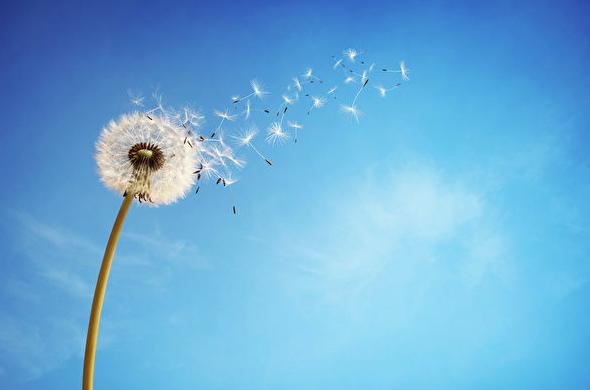 「宅配」と、熱中症対策に効果のある2つの「風」